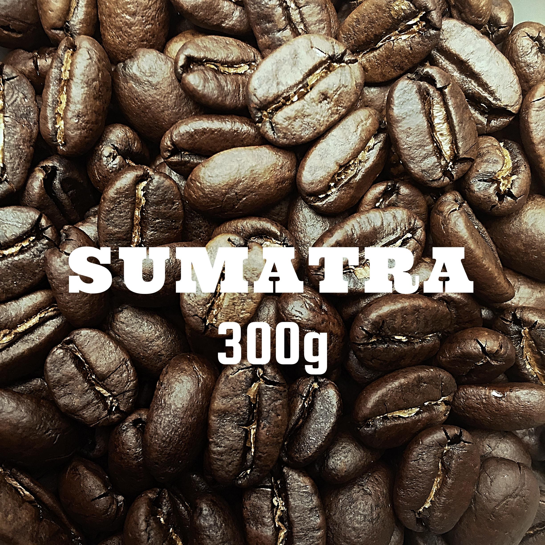スマトラ タノバタック 300g