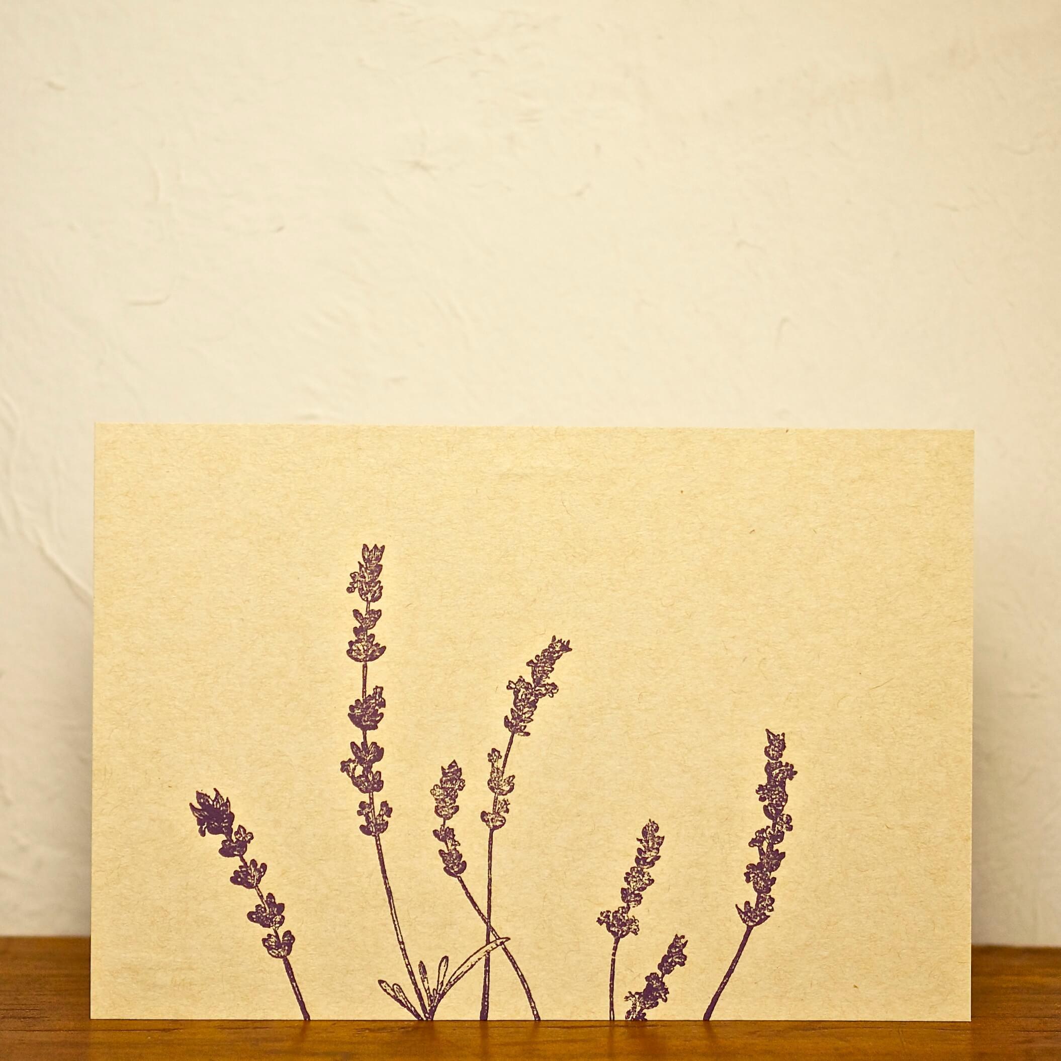 postcard ラベンダー