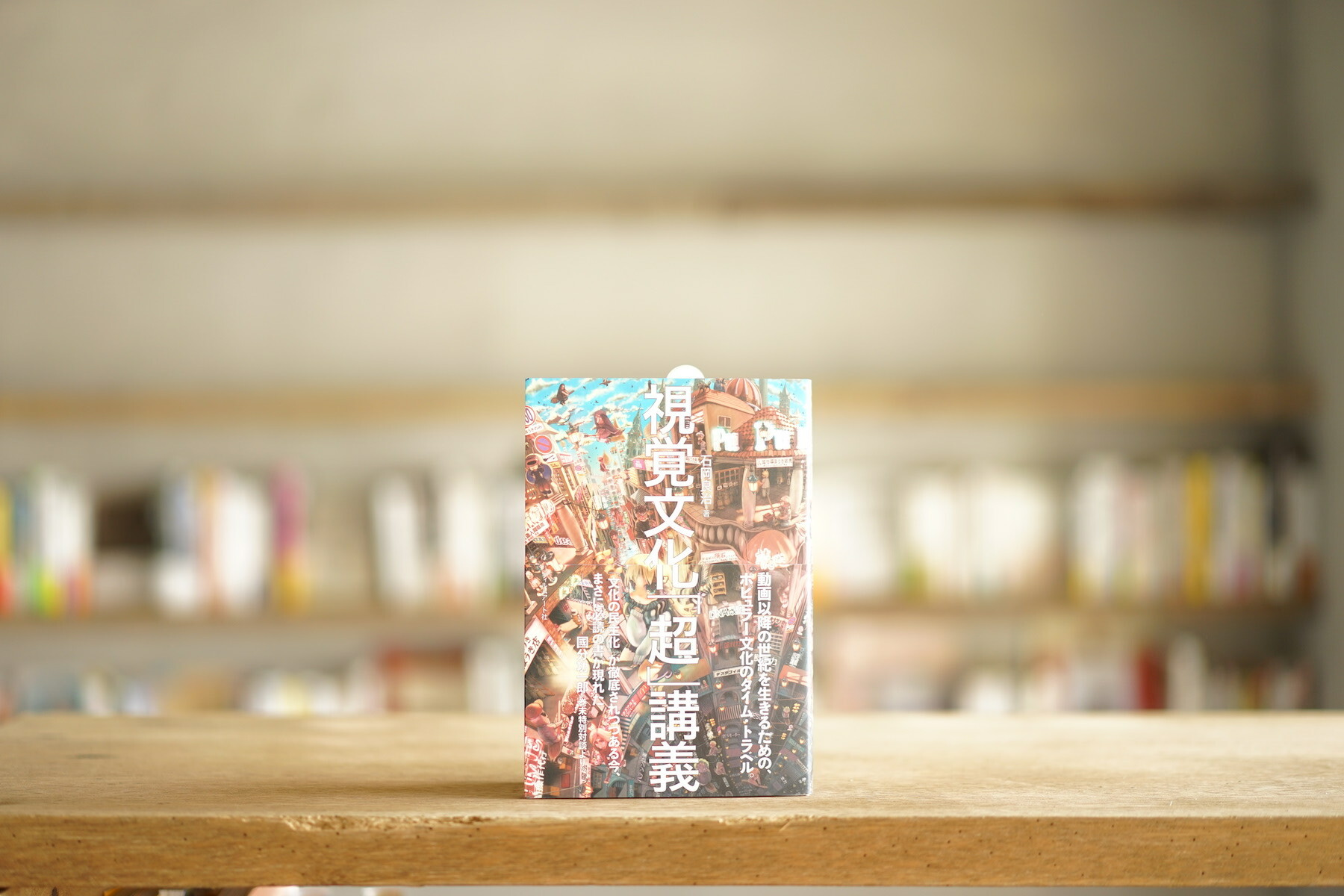 石岡良治 『視覚文化「超」講義』 (フィルムアート社、2014)