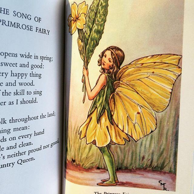 絵本「Flower Fairies of the Spring/Cicely Mary Barker」 - 画像3