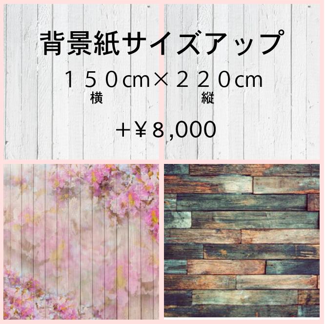 背景紙サイズアップ料金150cm×220cm