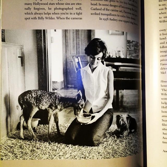 写真集「Audrey Style」 - 画像3
