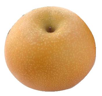 あきづき 5kg(8~9個)