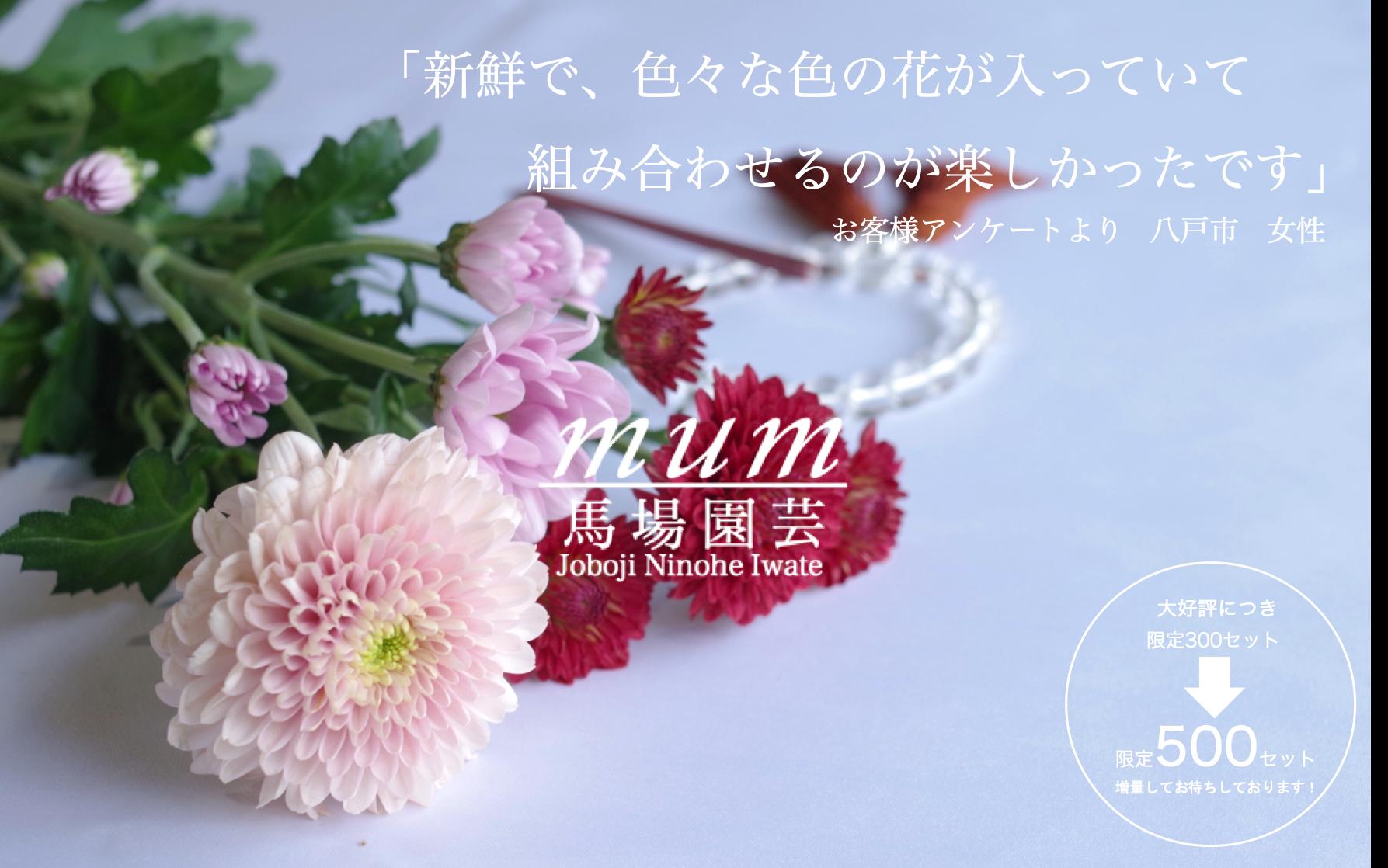 【お盆限定 送料無料 8月10日出荷限定】色とりどりの花束セット