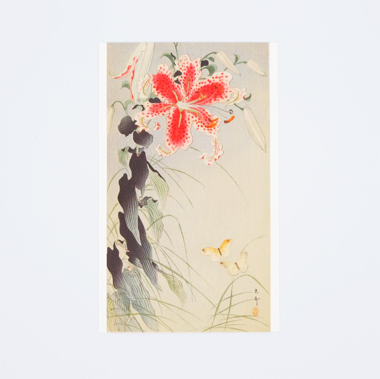 小原古邨ポストカード 鹿の子百合に紋白蝶