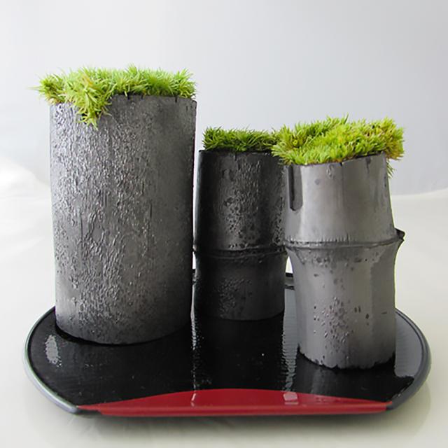 【送料無料】最上級の職人の技で仕上げた「竹炭インテリア」 | TAKESUMI 苔の癒し 苔庭セット
