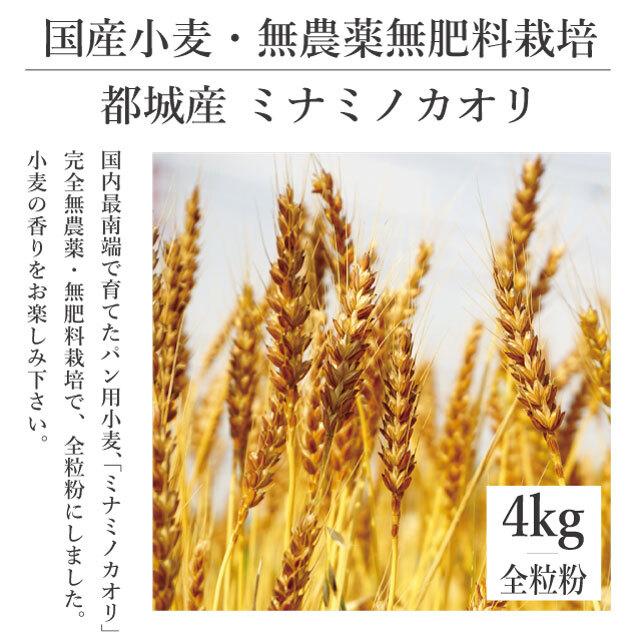 【送料別】4kg 完全無農薬・無肥料栽培 都城産小麦 [ミナミノカオリ]全粒粉