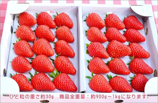 紅ほっぺデラックスパック 30粒入【大 箱】
