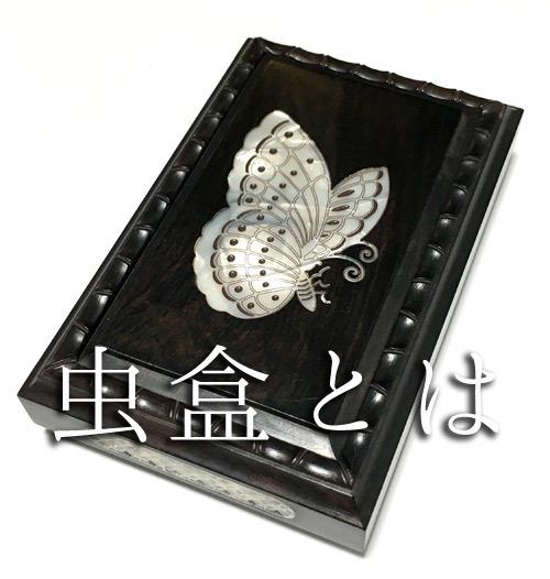 虫盒とは(開け方説明)