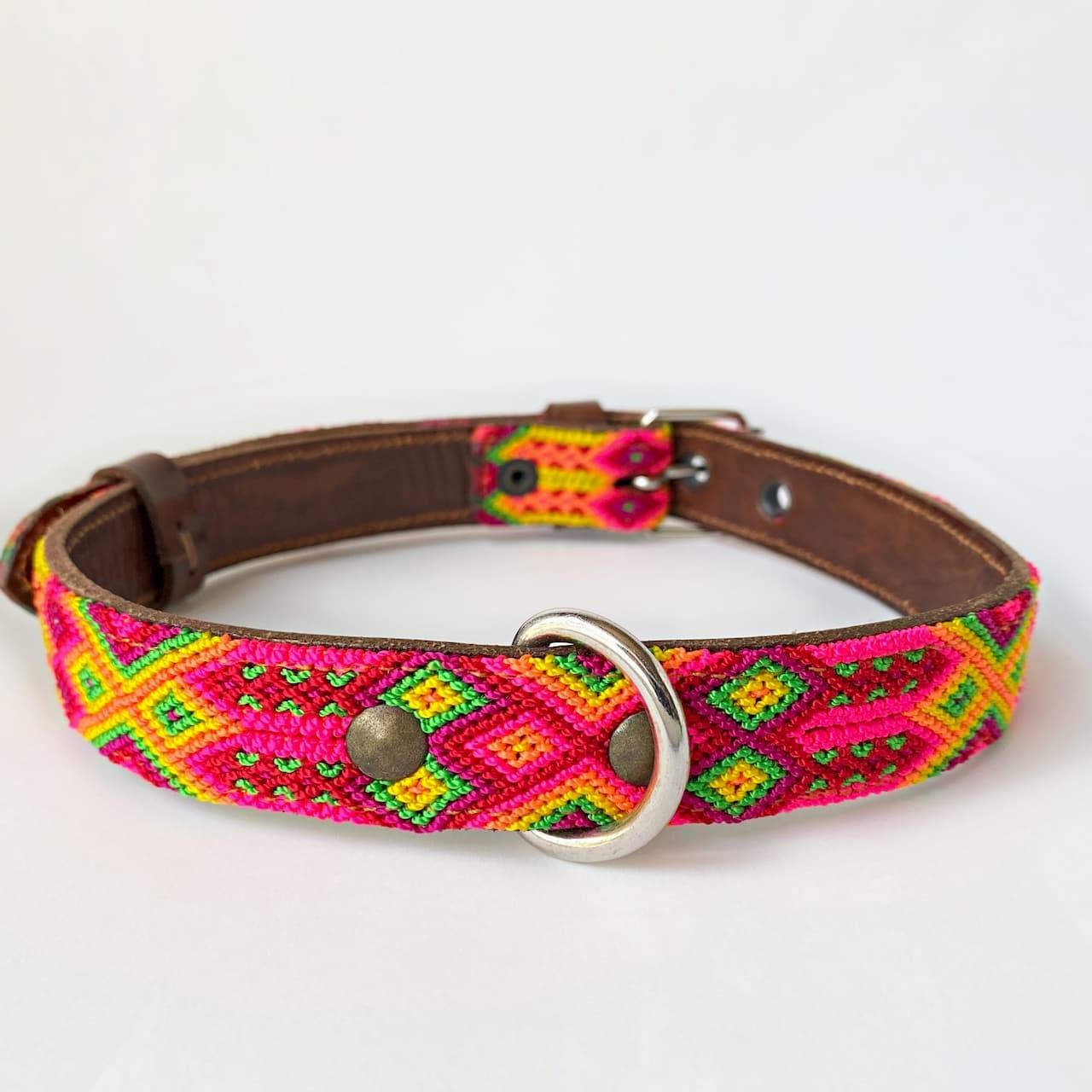 犬の首輪 -サイズL- [ジューシーフルーツ]