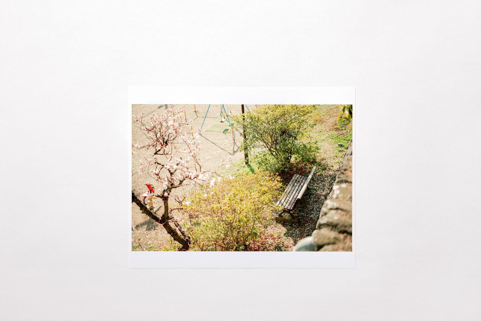 Photograph 08