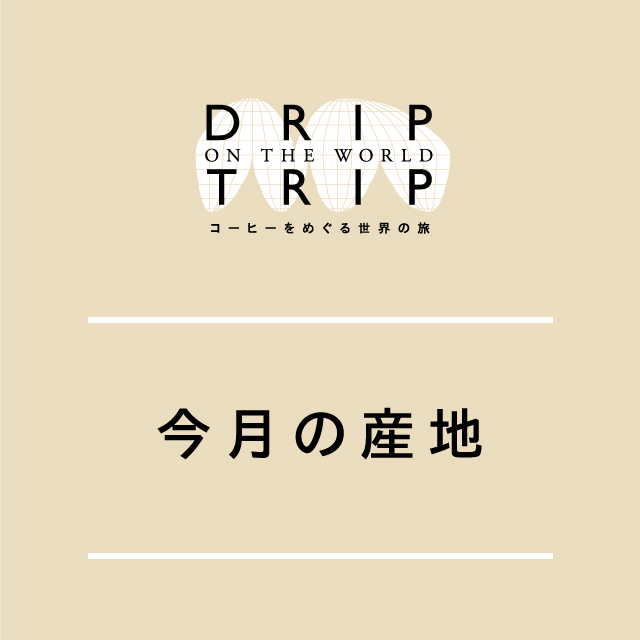 DRIP TRIP 今月の産地・ブラジル! 400g(クリックポスト対応)