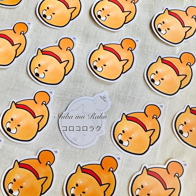 柴犬ラク ポストカード(コロコロラク)