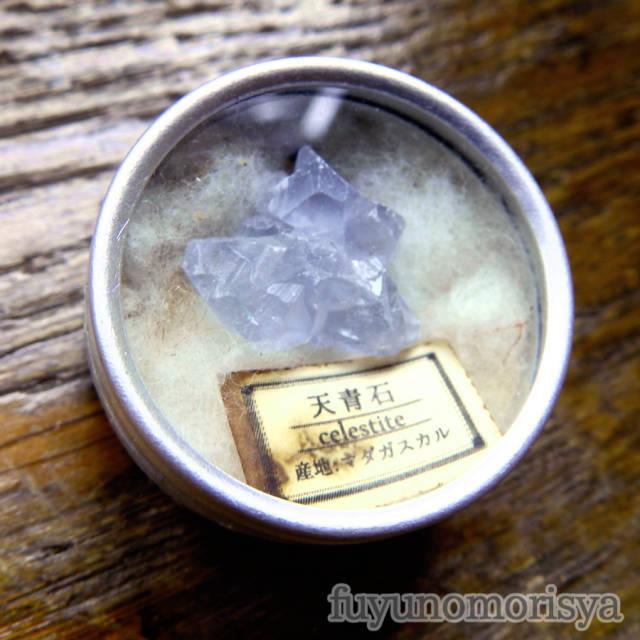 ブローチ - 標本缶 天青石 - フユノモリ社 - no19-fuy-22