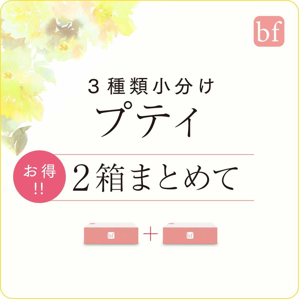 bf プティ【2箱セット】