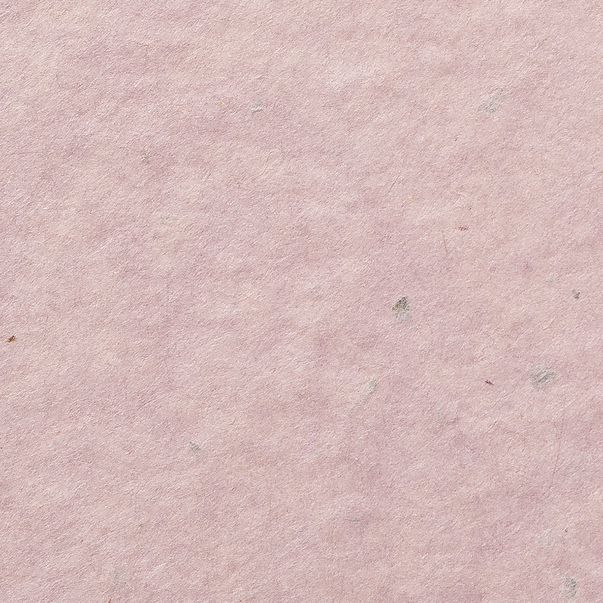 阿波 粕板紙 薄紫