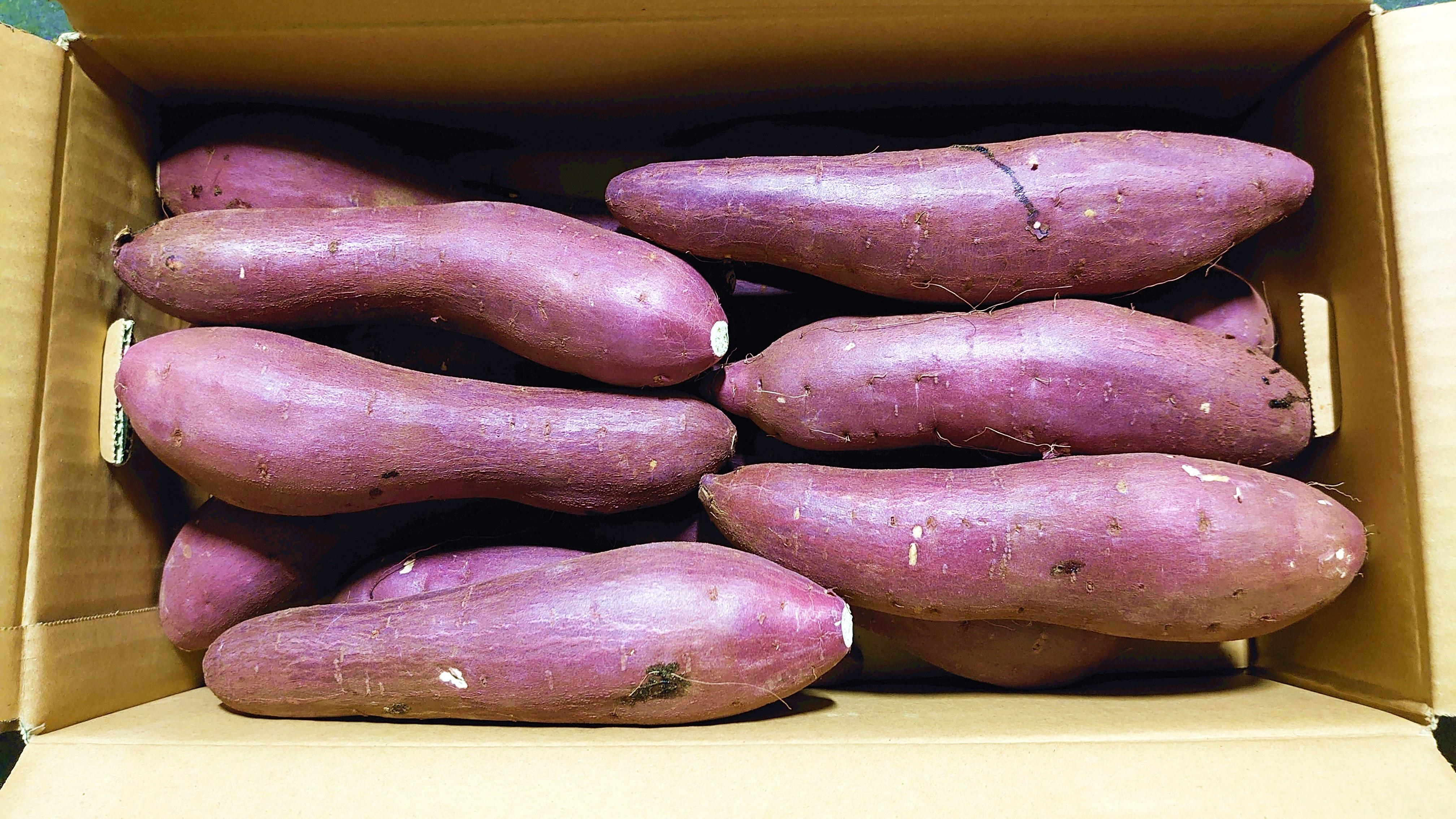 ★二台巨頭!安納芋と人気を二分している「紅はるか」のご紹介です。