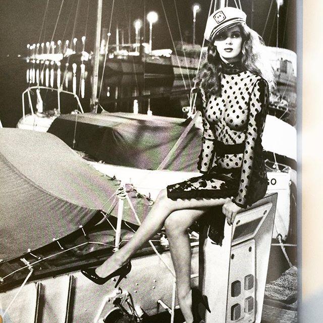 写真集「Helmut Newton (Stern Fotografie)」 - 画像3