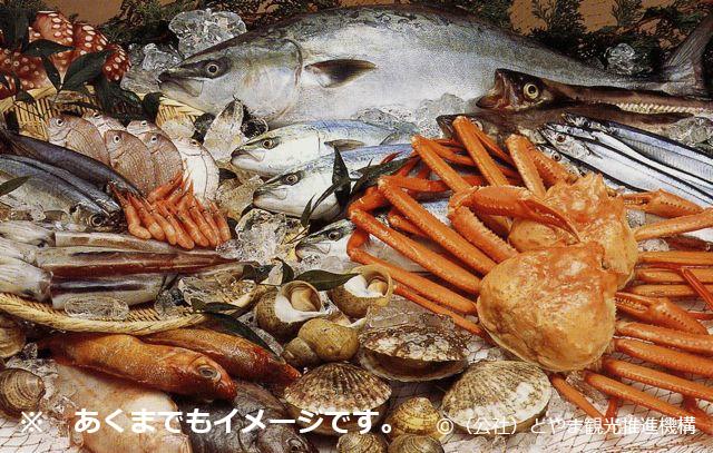 【送料無料】季節のお魚干物セット