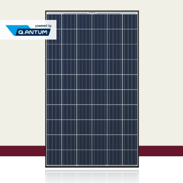 Qセルズ 太陽光モジュール Q.PLUS BFR-G4.1 285W 多結晶 Q.ANTUMセル技術