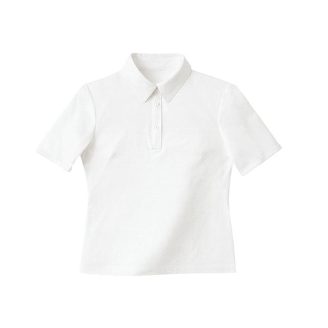 HANECTONE 半袖きれいポロ WP301