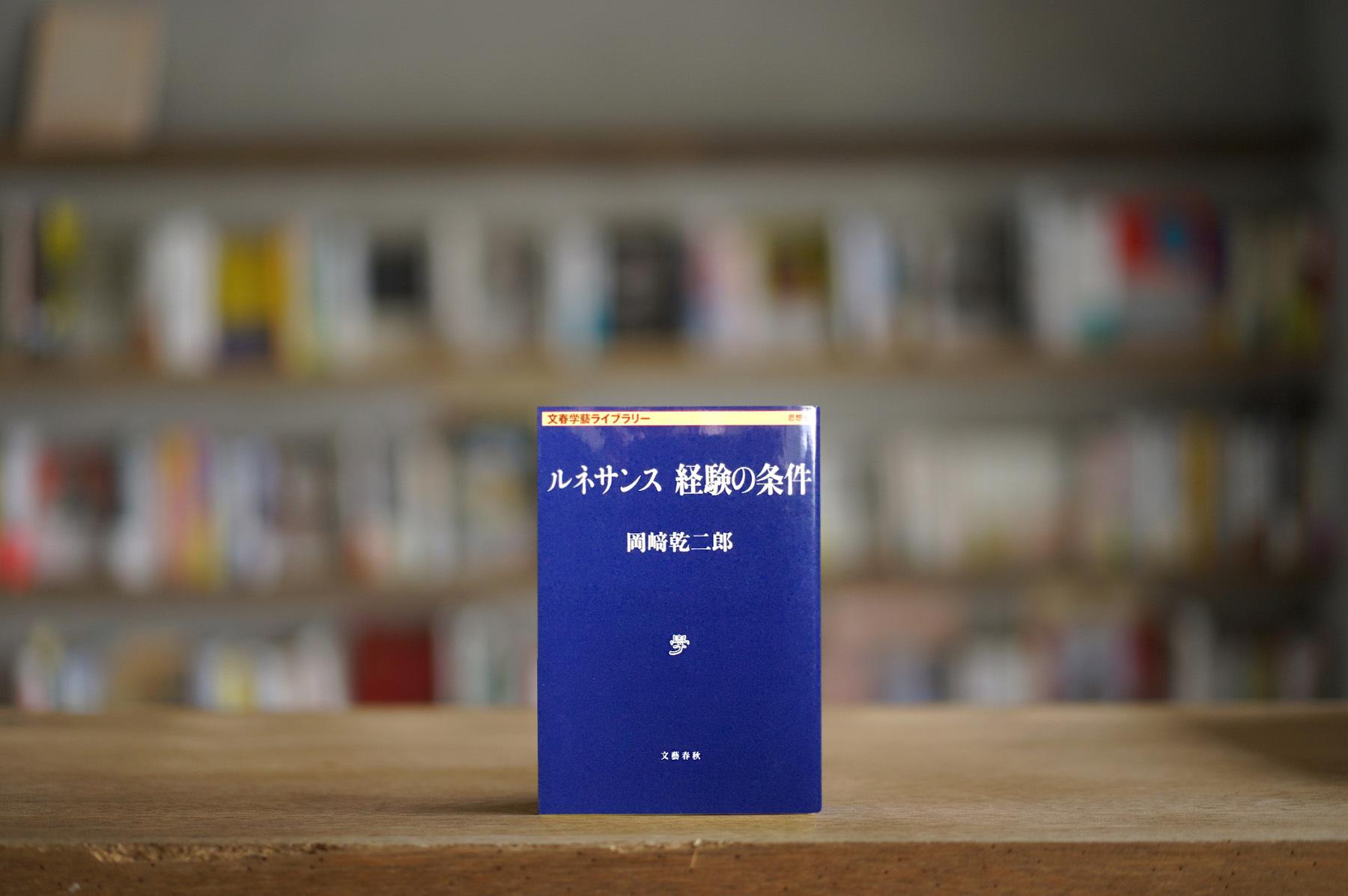 岡﨑乾二郎 『ルネサンス 経験の条件』 (文藝春秋、2014)