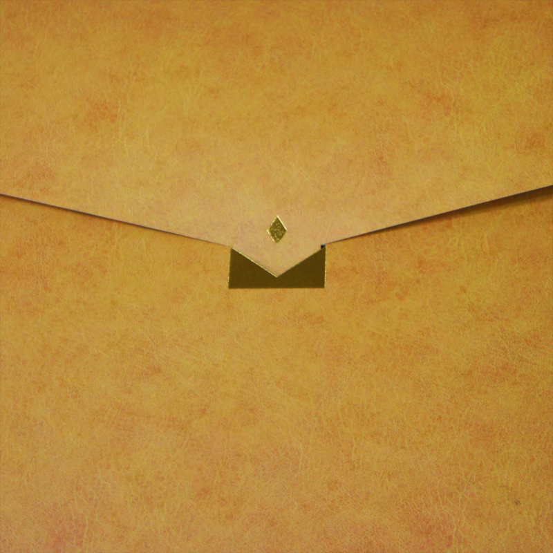 【オレンジ×豹柄】A4クリアケースも入る紙製バッグ BGD01CB