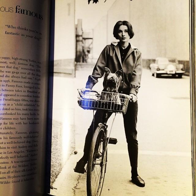写真集「Audrey Style」 - 画像2
