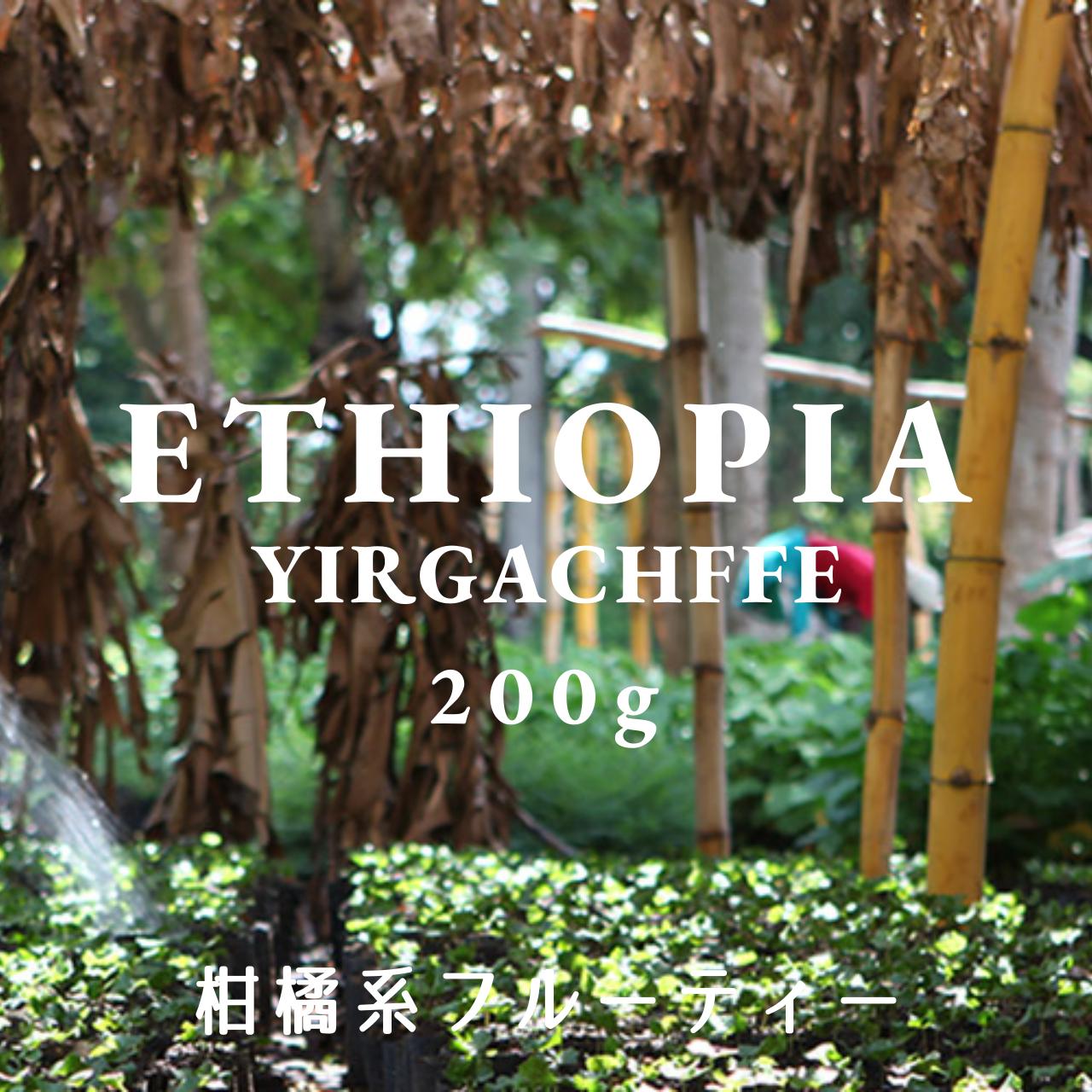 ETHIOPIA|YIRGACHEFFE MOPLACO|コーヒー豆 200g