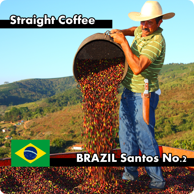 ブラジル・サントスNo.2 1kg
