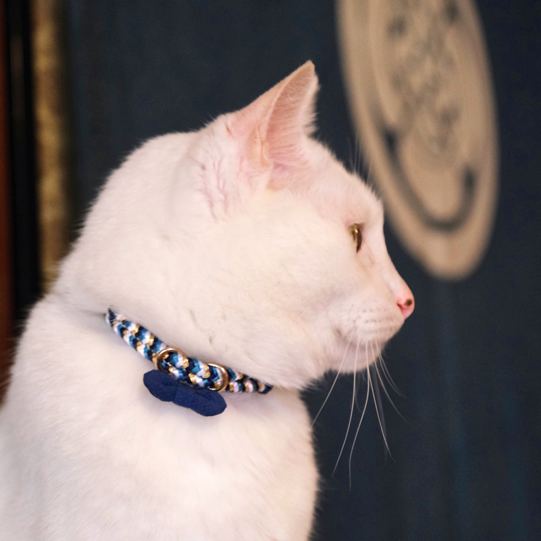 【猫首輪】Blue Ocean ブルーオーシャン