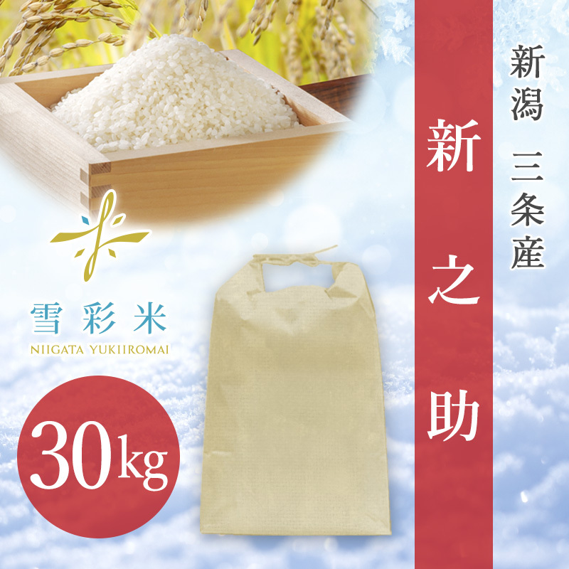 【雪彩米】三条産 新米 令和2年産 新之助 30kg
