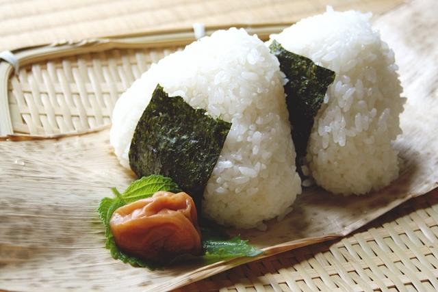 丹波篠山産 特別栽培コシヒカリ 10kg