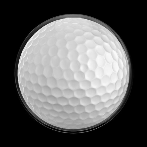 ゴーバッジ(ドーム)(CD0502 - SPORTS GOLF) - 画像1