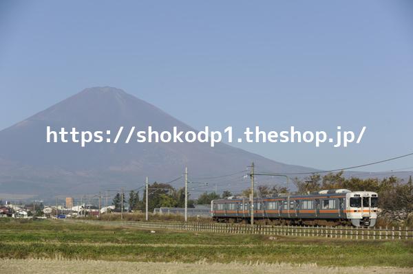 313系と富士山_DSC7843