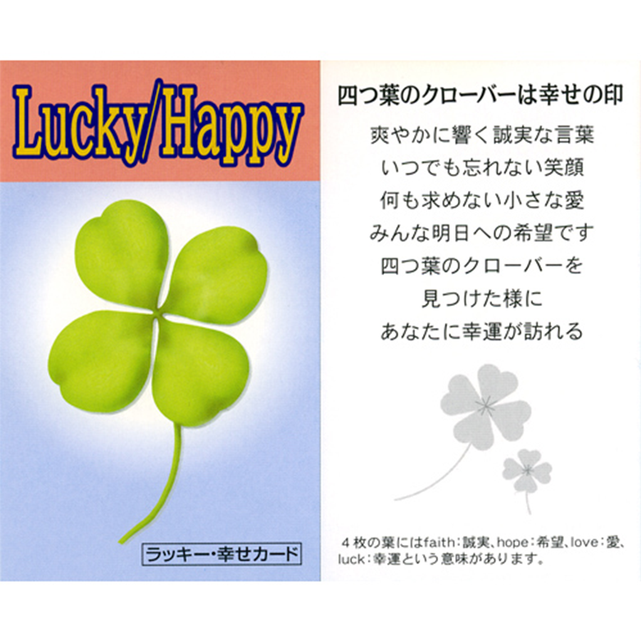【勇気・積極性・行動力・決断・成功】ラッキースター・ターコイズブレスレット(「ラッキー・幸せカード」付き)