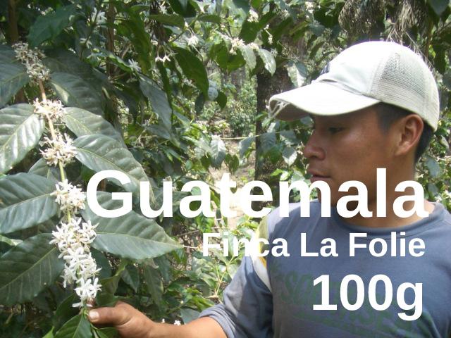 Guatemala | Antigua Finca La Folie  | コーヒー豆 100g