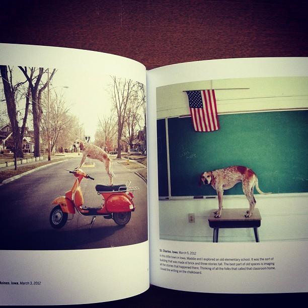 写真集「Maddie on Things/Theron Humphrey」 - 画像2