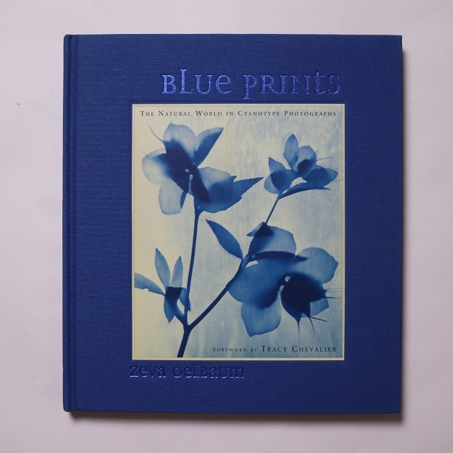 Blue Prints: The Natural World In Cyanotype Photos / Zeva Oelbaum
