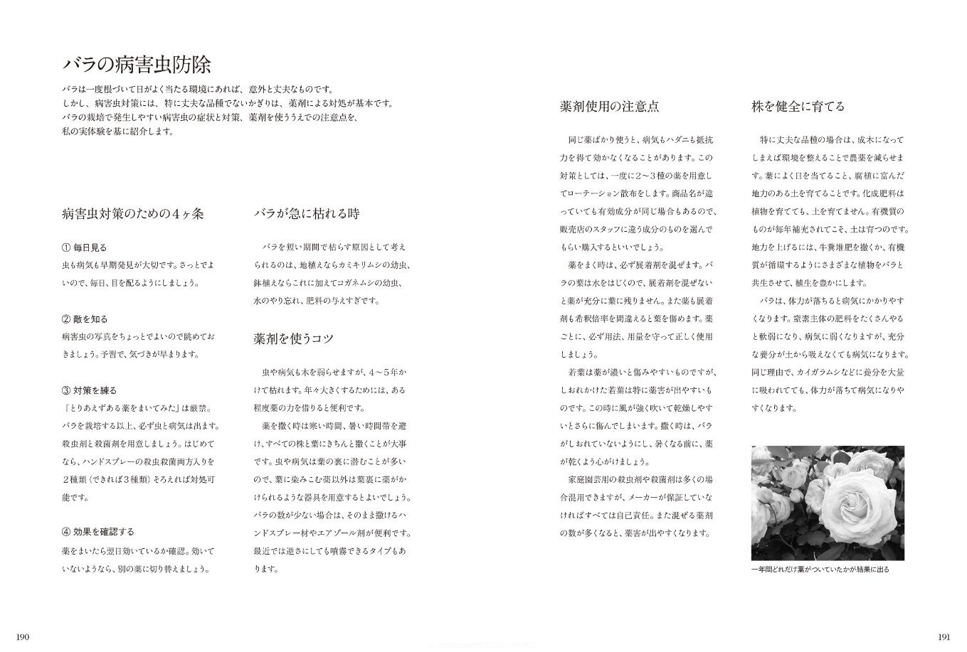 【送料無料】『ガーデンライフシリーズ モダンローズ』[書籍] - 画像5