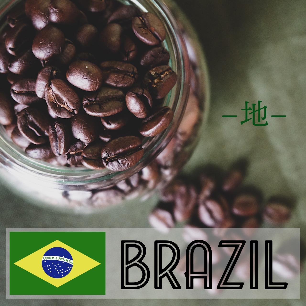 ブラジル 100g ー地ー