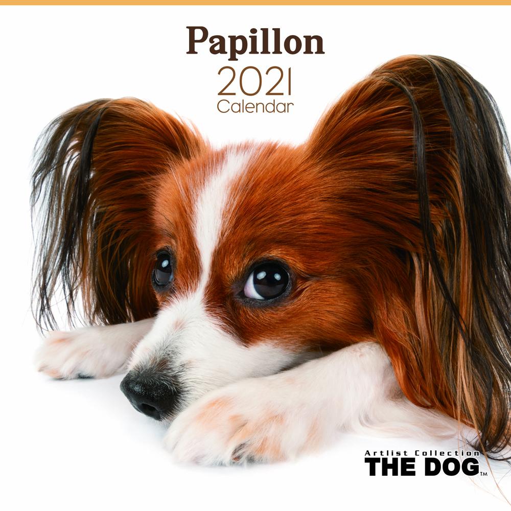 2021年 THE DOGカレンダー【大判サイズ】パピヨン