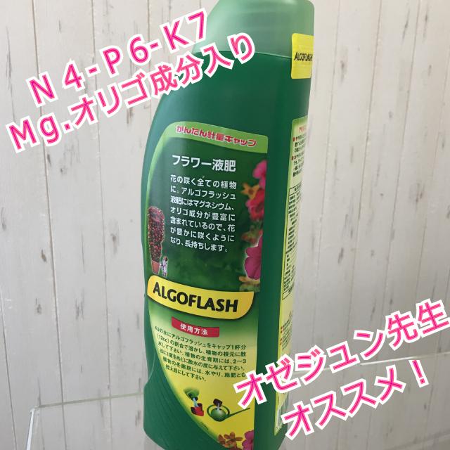 アルゴフラッシュフラワー液肥1ℓオゼジュン先生イチオシ!液体肥料 - 画像2