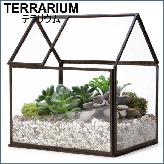 テラリウム用家型ガラスケース M【予約】