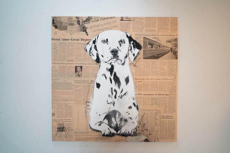 Dalmatian / ダルメシアン