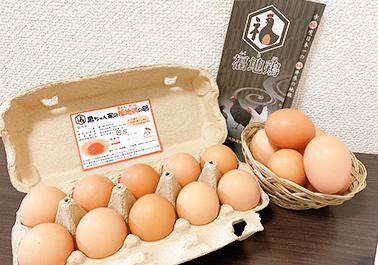 福地鶏の卵 20個セット(無調整)