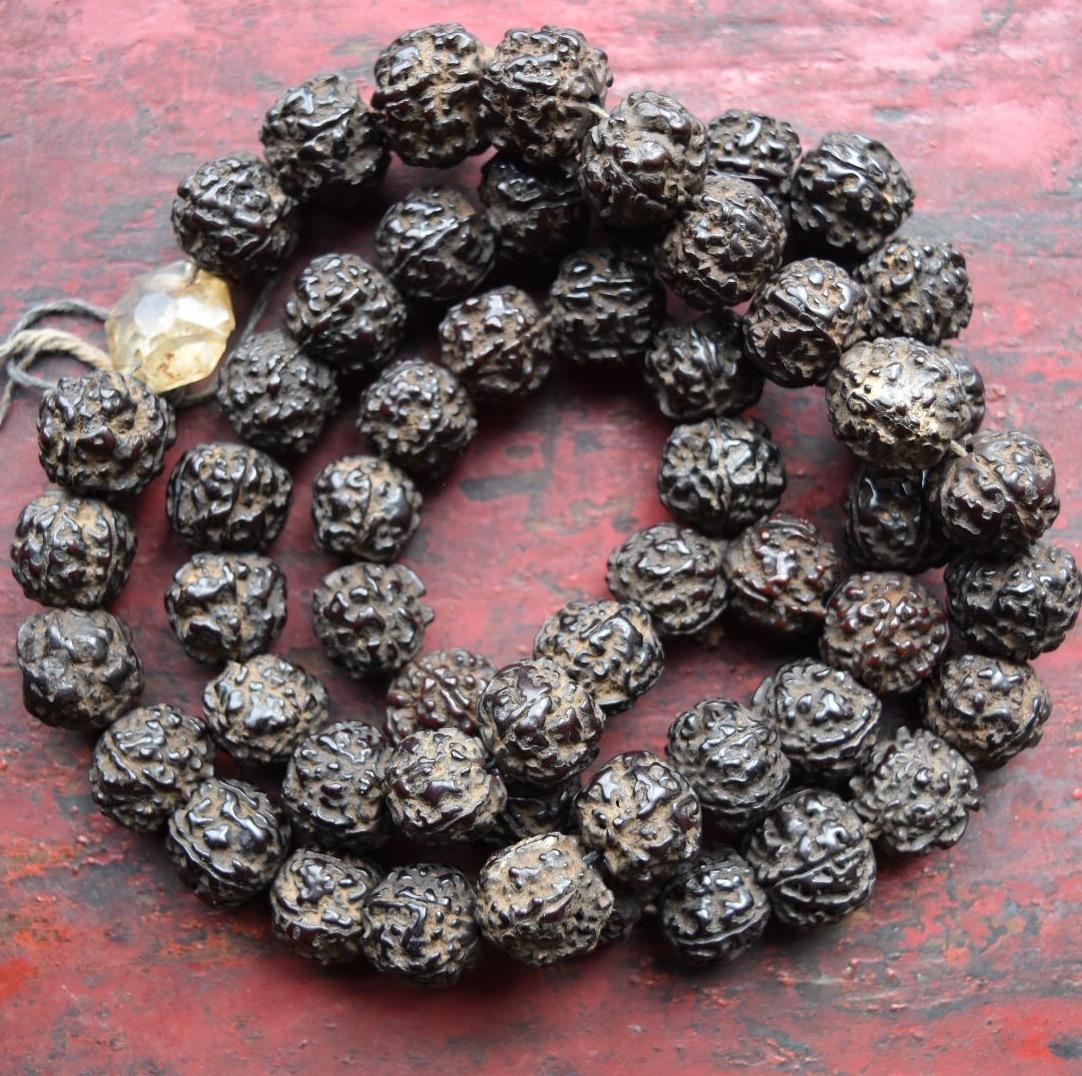 アンティーク・ルドラクシャ 金剛菩提樹の一連数珠