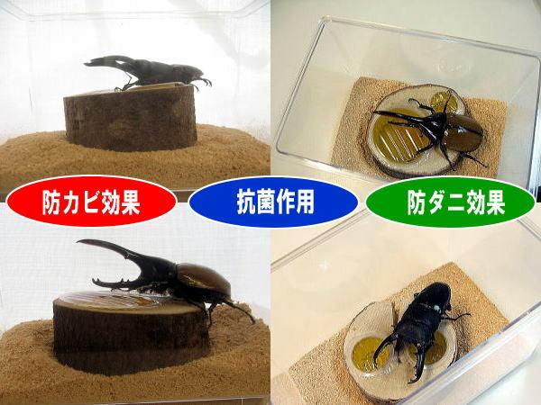 ひのきフレーク 抗菌・防カビ・