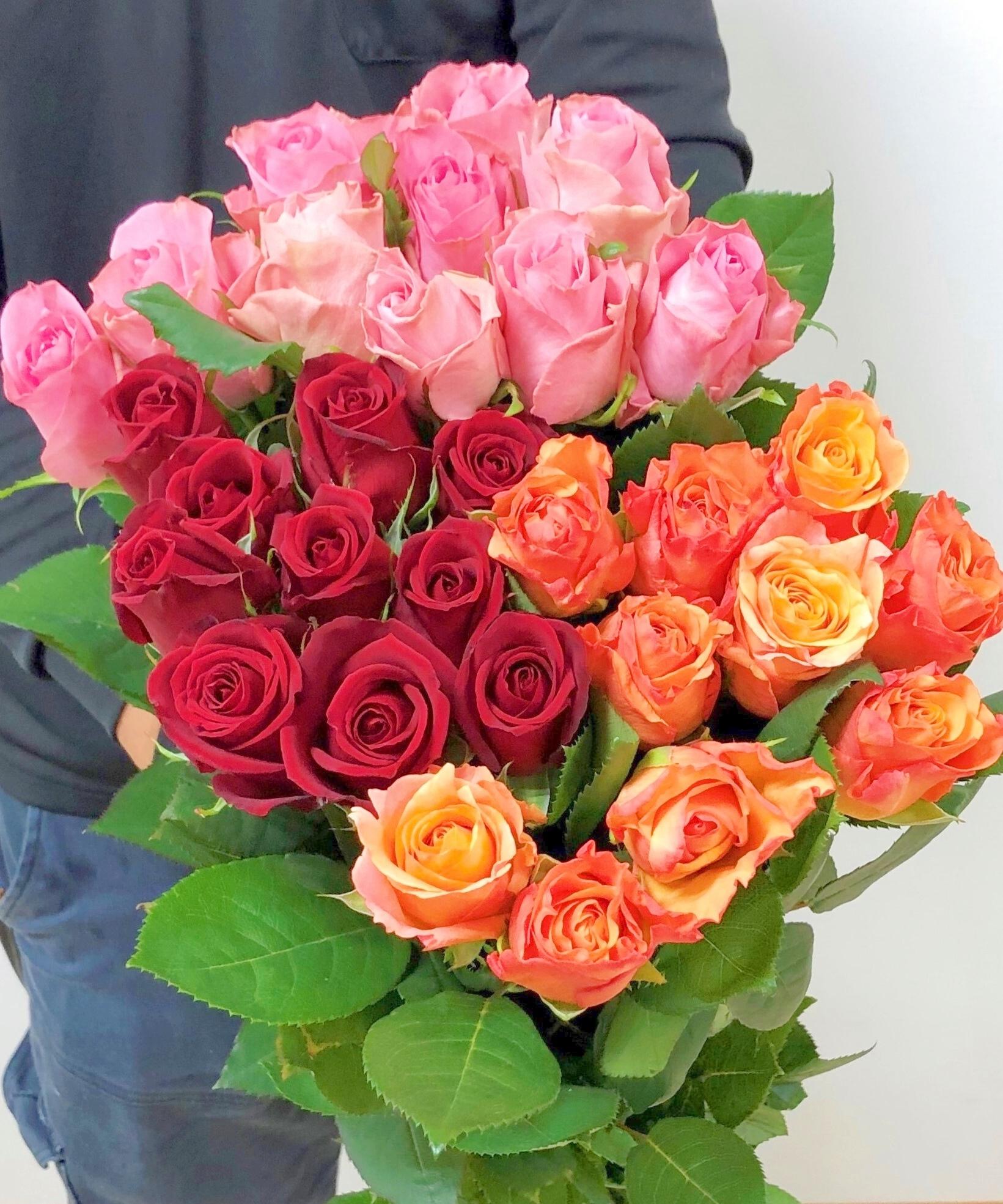 ★送料無料(クール便)厳選バラ!Fujiwara3色ミックス(赤・ピンク・オレンジ)30本! 【ロスフラワー救済!】