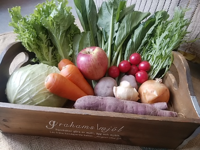 フィールの無農薬野菜定期宅配セット 週1回お届け3回分 送料1回500円